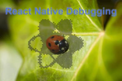 Fixing React native gradlew access error
